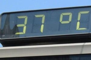 temperaturi-caniculare