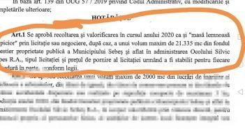 """Un nou TUN marca Dorin Nistor. Cine sunt cei 11 """"arhangheli"""" ai Sebeșului care au semnat tăierea a 500 de camioane de lemn"""